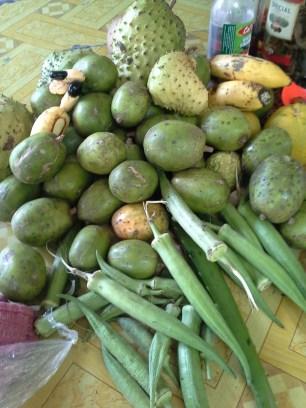 June plum, okra, mangoes