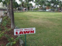 The beautiful lawn must be enjoyed from a distance