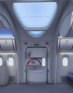 Pin by jerid fox on pilgrims urbanite boeing private jet also rh pinterest