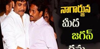 jagan plans to bring nagarjuna in YSRCP party
