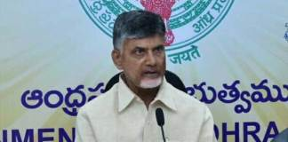 Chandrababu gives Suggestions to AP Mps