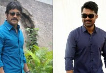 Nagarjuna another multi starrer with Kalyan Ram