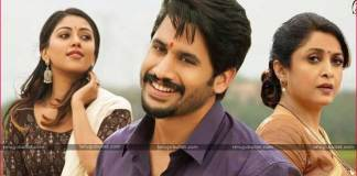 Naga Chaitanya New Movie Sailaja Reddy Alludu