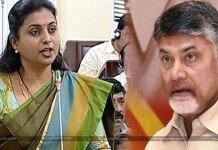 MLA Roja Comments on Chandrababu