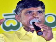 tdp leaders fight