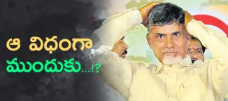 chandrababunaidu national politics