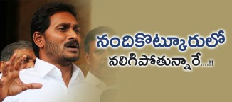 ysrcongressparty-in-nandikotkur-constiuency