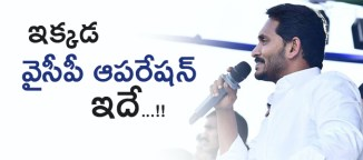 ysrcongressparty-in-pedakurapadu-consituency