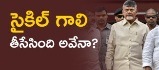 chandrababu naidu telugudesam party