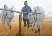 Maharshi pre release function on 1 May