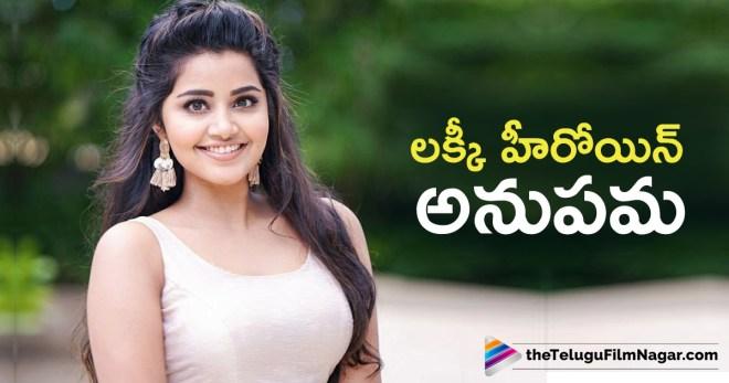 మేం లక్కీ అంటున్న అనుపమా పరమేశ్వరన్,Telugu Filmnagar,Telugu Movies News 2018,Latest Telugu Film News,Tollywood Cinema Updates,Anupama Saying That How Lucky Actor Are,Actress Anupama Parameswaran Latest News,Heroine Anupama Parameswaran Upcoming Movie News,Anupama Parameswaran Next Film Updates