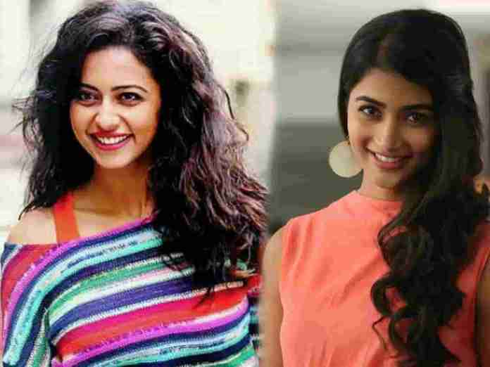 Pooja Hegde To Compete With Rakul Preet Singh