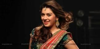 Desamuduru Actress Interesting Take On Marriage
