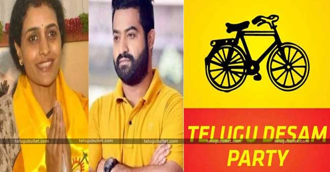 NTR Jr's Blow To The TDP Chief For Snap Polls
