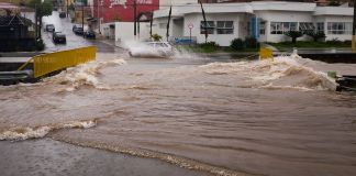 Death toll reaches 54 in Brazil flooding : Authorities