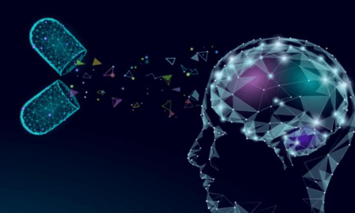 How longevity gene protects brain stem cells from stress