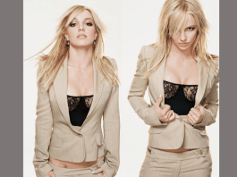 Britney Spears (Twitter image)