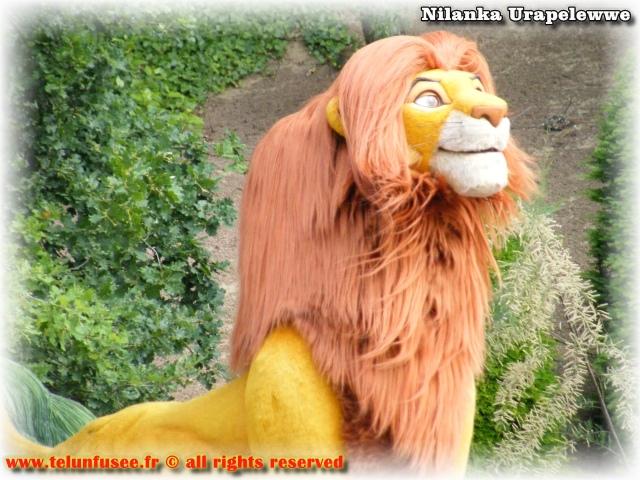 nilanka-urapelewwe-blog-voyage-france-disneyland-paris-travel-blog-telunfusee-106