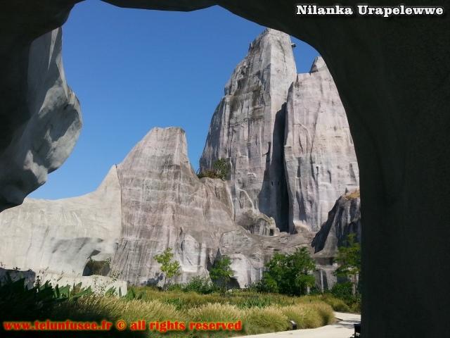 nilanka-urapelewwe-blog-voyage-france-zoo-de-vincennes-travel-blog-telunfusee-15