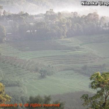 nilanka-urapelewwe-blog-voyage-sri-lanka-welimada-travel-blog-telunfusee-64