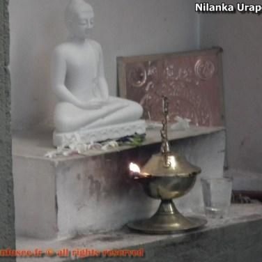 nilanka-urapelewwe-blog-voyage-sri-lanka-welimada-travel-blog-telunfusee-65