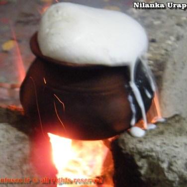 nilanka-urapelewwe-blog-voyage-sri-lanka-welimada-travel-blog-telunfusee-78