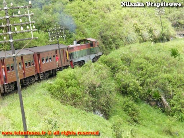 nilanka-urapelewwe-blog-voyage-srilanka-nuwara-eliya-travel-blog-telunfusee-14
