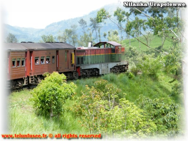 nilanka-urapelewwe-blog-voyage-telunfusee-colombo-transport-03-srilanka-travel-blog