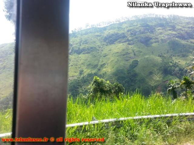 nilanka-urapelewwe-blog-voyage-sri-lanka-badulla-travel-blog-telunfusee-3