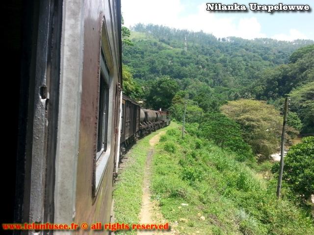 nilanka-urapelewwe-blog-voyage-sri-lanka-badulla-travel-blog-telunfusee-5
