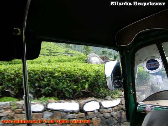 nilanka-urapelewwe-blog-voyage-sri-lanka-bandarawela-travel-blog-telunfusee-1