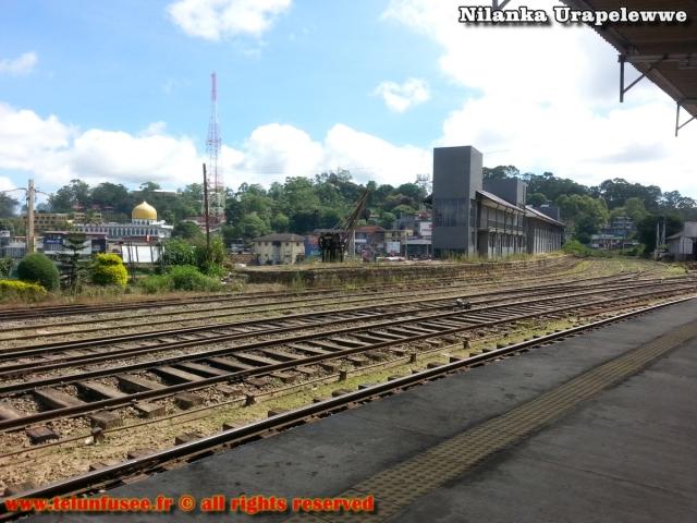 nilanka-urapelewwe-blog-voyage-sri-lanka-bandarawela-travel-blog-telunfusee-10