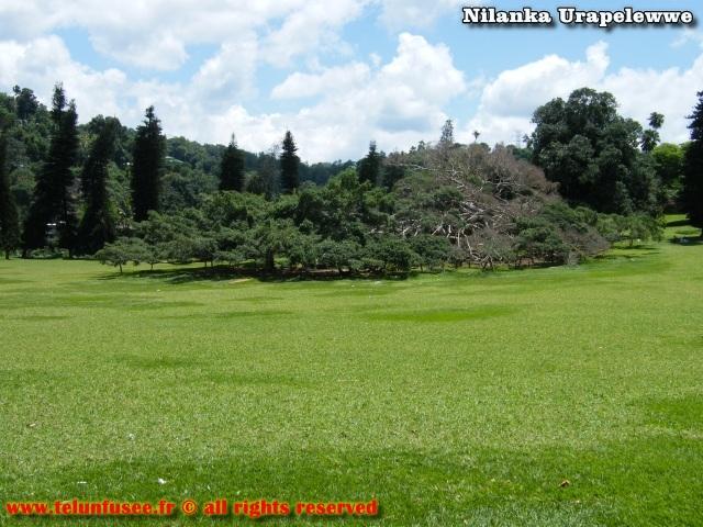 nilanka-urapelewwe-blog-voyage-sri-lanka-kandy-travel-blog-telunfusee-12