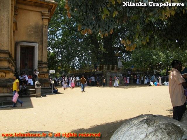 nilanka-urapelewwe-blog-voyage-sri-lanka-kelaniya-temple-travel-blog-telunfusee-3
