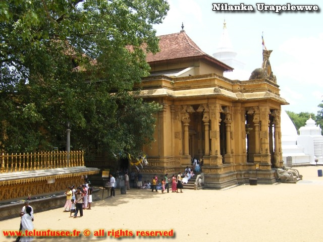 nilanka-urapelewwe-blog-voyage-sri-lanka-kelaniya-temple-travel-blog-telunfusee-4