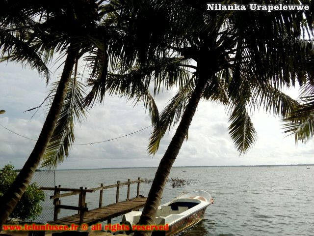 nilanka-urapelewwe-blog-voyage-sri-lanka-negambo-travel-blog-telunfusee-2