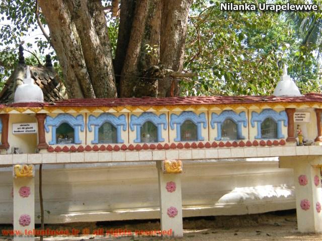 nilanka-urapelewwe-blog-voyage-sri-lanka-nikapotha-beralagala-travel-blog-telunfusee-2