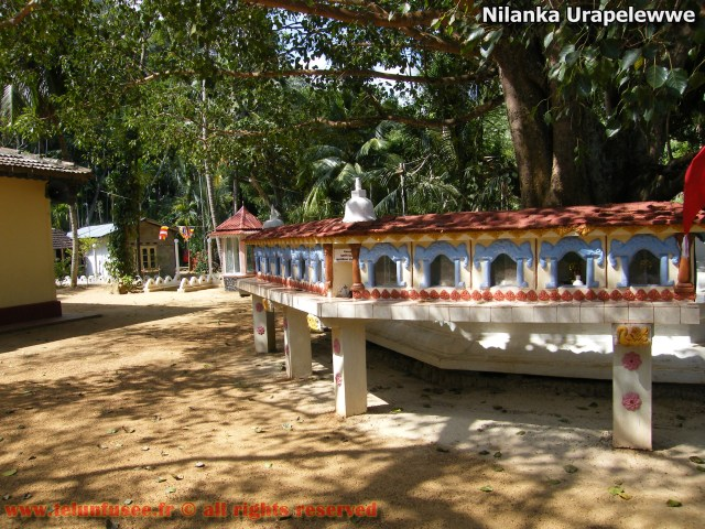 nilanka-urapelewwe-blog-voyage-sri-lanka-nikapotha-beralagala-travel-blog-telunfusee-7