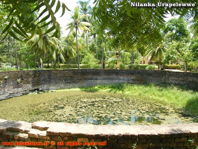 nilanka-urapelewwe-blog-voyage-sri-lanka-polonnaruwa-travel-blog-telunfusee-10