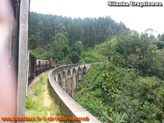 nilanka-urapelewwe-blog-voyage-sri-lanka-trains-travel-blog-telunfusee-8