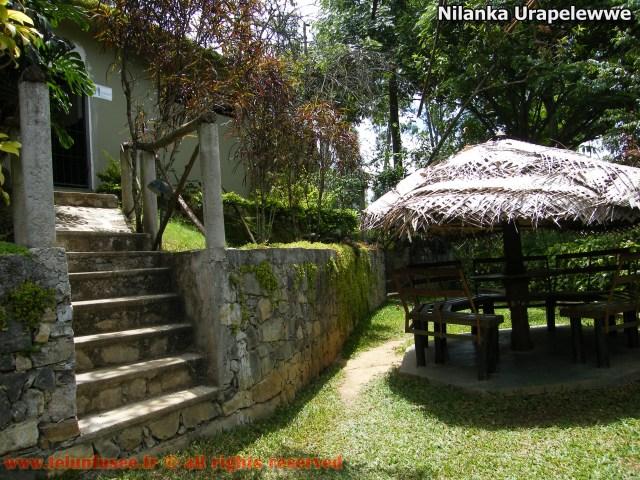 nilanka-urapelewwe-blog-voyage-sri-lanka-welimada-travel-blog-telunfusee-13