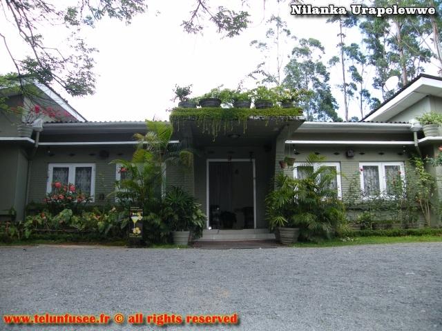 nilanka-urapelewwe-blog-voyage-sri-lanka-welimada-travel-blog-telunfusee-2