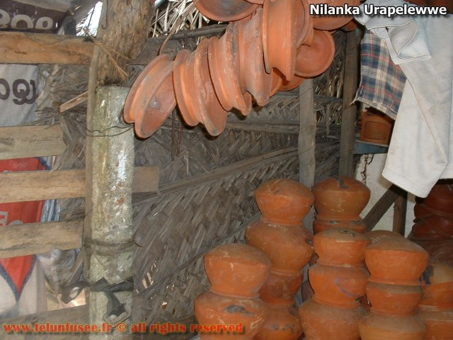 nilanka-urapelewwe-blog-voyage-telunfusee-gampaha-srilanka-travel-blog-01