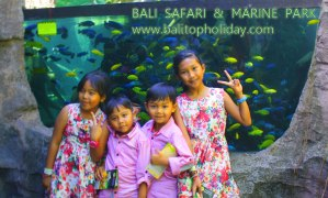 bali-safari-and-marine-park