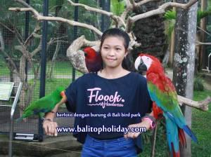 foto-di-bali-bird-park