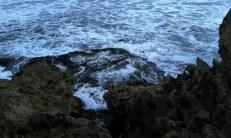 Kehangatan Keluarga OLI : Ocean Of Life dok. temansetaman