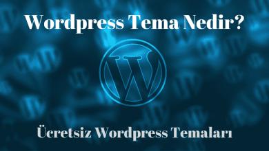 Wordpress Tema Nedir ve Ücretsiz Temalar