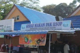 Patin Tempoyak Temerloh