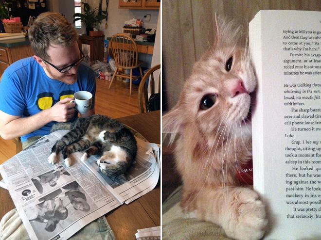 reading-pets3