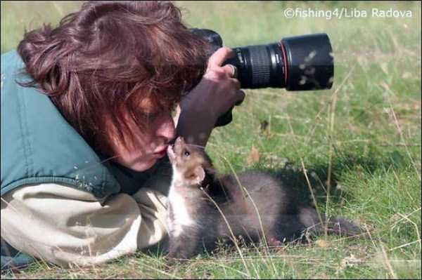 animals-photographers-19